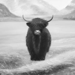 Monochrome highland cow