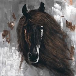 Dark brown horse