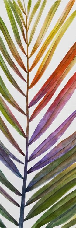 Watercolor tropical palm leave