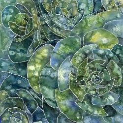 Abstract succulents