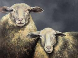 Two sheeps