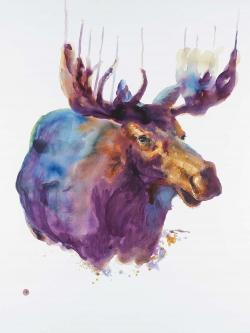 Abstract moose