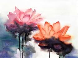 Watercolor lotus flowers