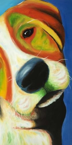 Colorful beagle dog