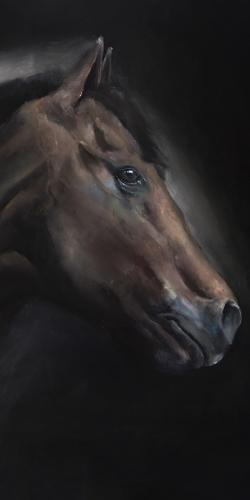Loneliness horse