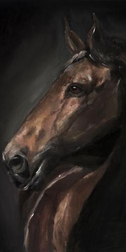 Spirit the horse