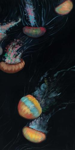Colorful jellyfishes swimming in the dark