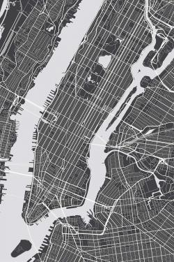 New-york city plan