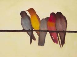 Five birds on a branch