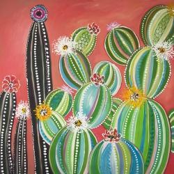 Cactus en arc-en-ciel