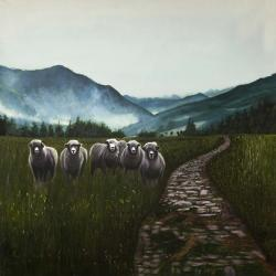 Sheep in the countryside