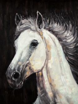 White star horse