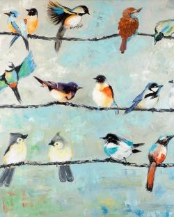 Small colorful birds