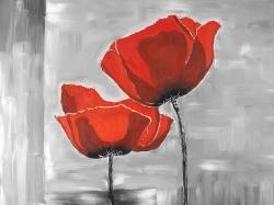Two red flowers on a grayscale background