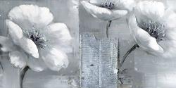 Peaceful black & white flowers