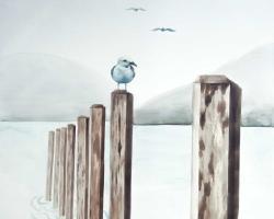 Seagull at the marina