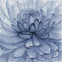 Blue petals flower