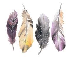 Bohemian feather set
