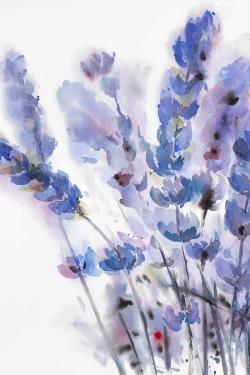 Watercolor lavender flowers
