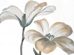 Beautiful desaturated flowers