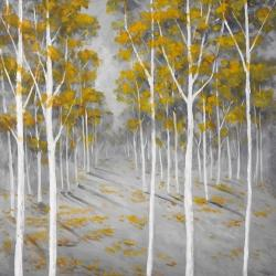 Forêt de bouleaux d'automne