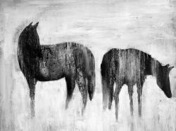 Horses silhouettes in the mist