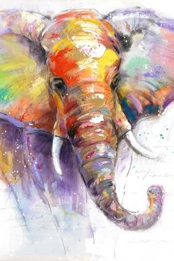 Beautiful and colorful elephant