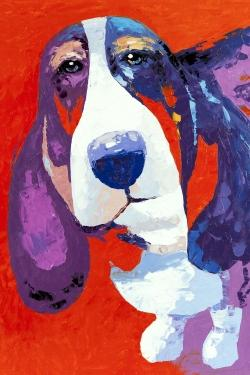 Abstract colorful basset dog