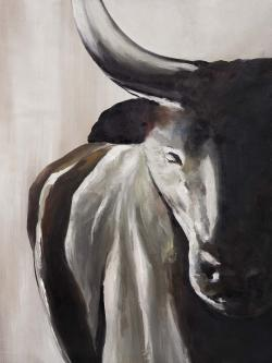 Bull head front view