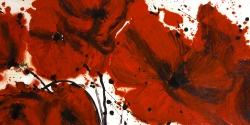 Abstract red flowers field