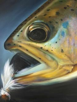 Golden trout with fly fishing flie