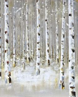 Birch forest by winter