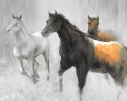 Abstract herd of horses