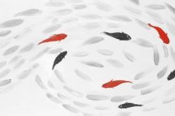 Swimming fish swirl