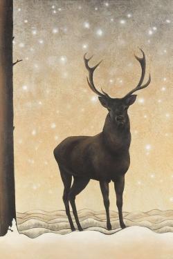 Roe deer in winter