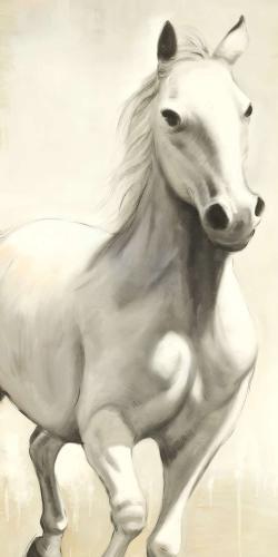Gallant white horse