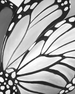 Monarch wings closeup
