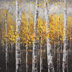 Sunny birch trees