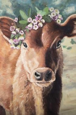 Cute jersey cow