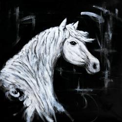 Horse profile view