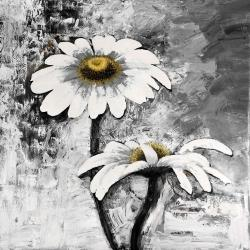 Abstract daisies flowers