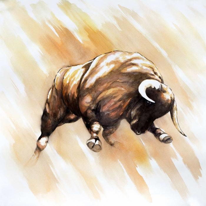 Attaque de taureau
