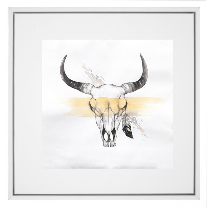 Cow skull with feather