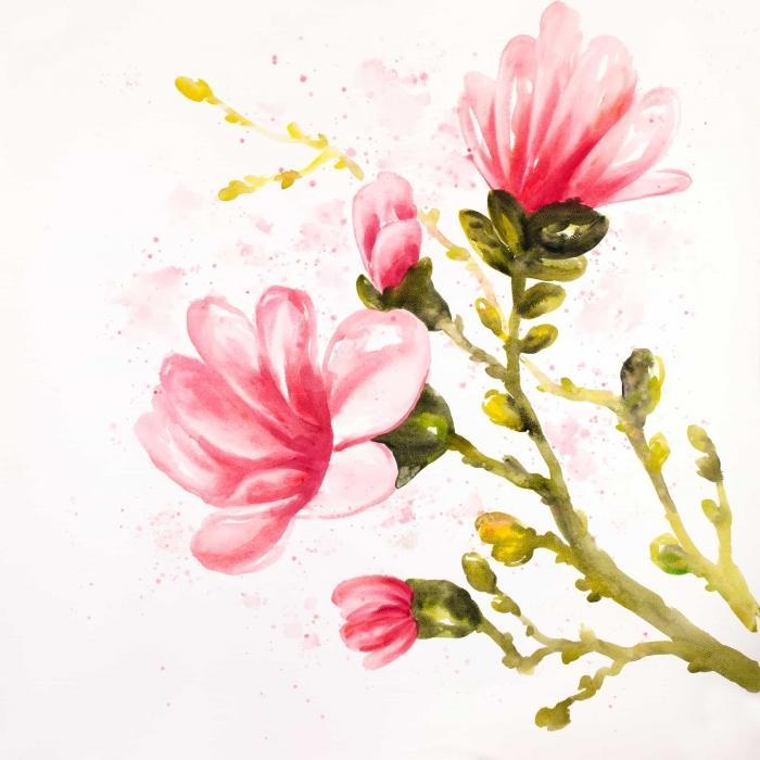 Fleurs de magnolia à l'aquarelle