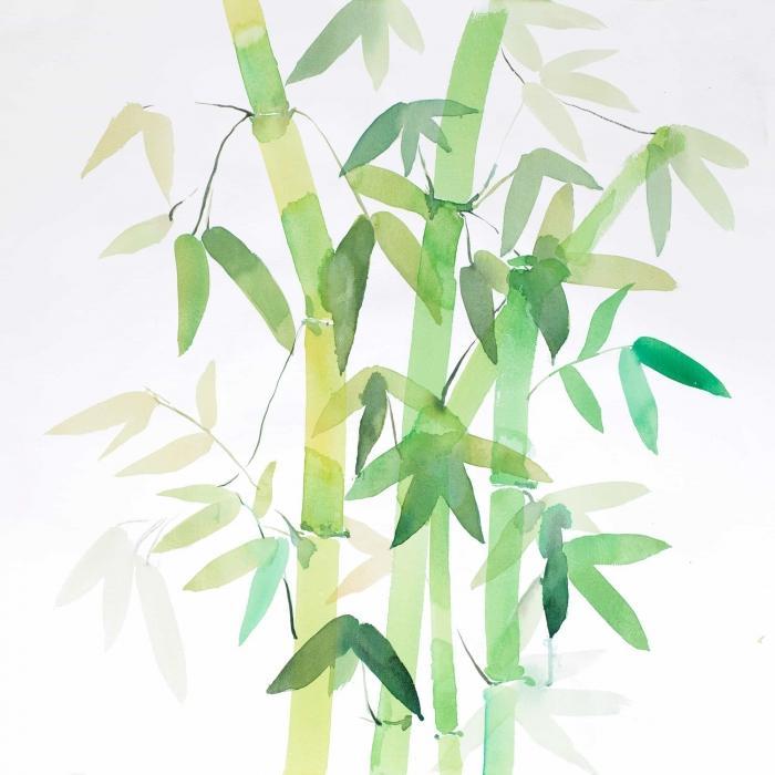 Bambou et ses feuilles