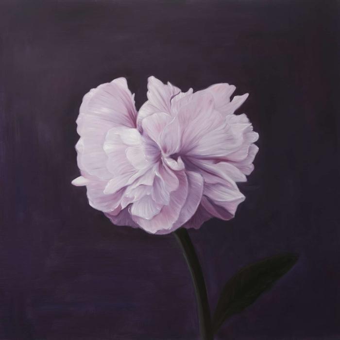 Magnifique fleur rose