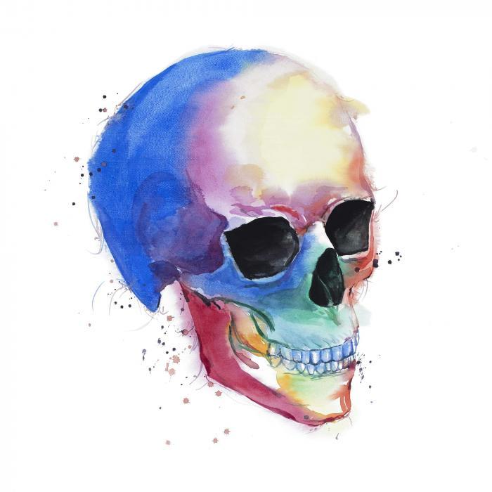 Profil de crâne coloré aquarelle