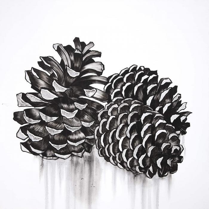 Deux petites cocottes de pin