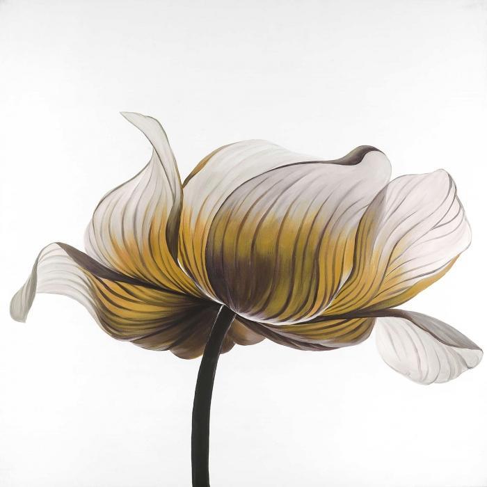 Fleur anémone jaune