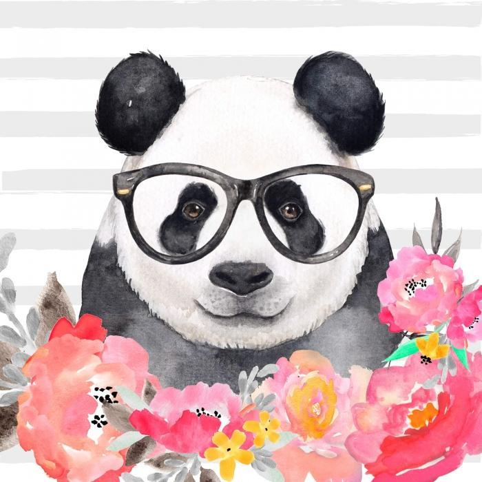 Panda à lunette